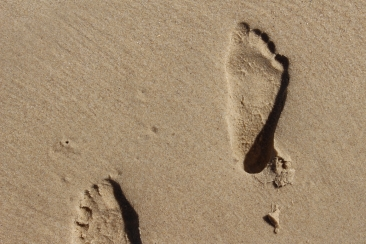 footprints in the sand bach flower remedy blog